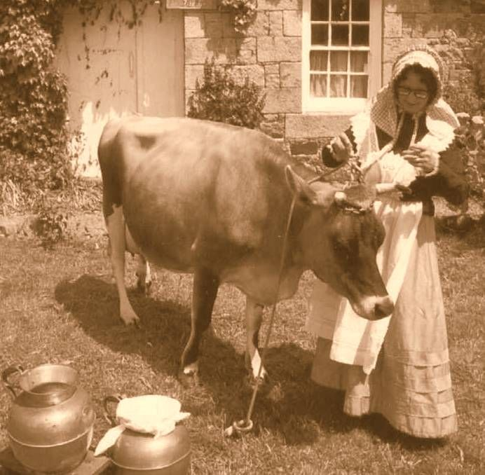 Old Milk Maid photo